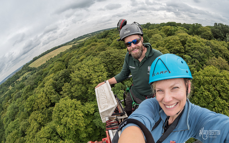 Conservation Arborists at Pole Hill