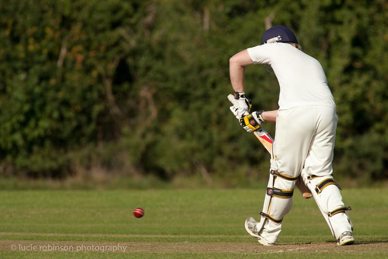 110820 - cricket - 398.jpg