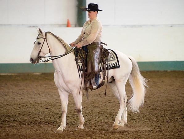 Working Equitation B-Rated Show