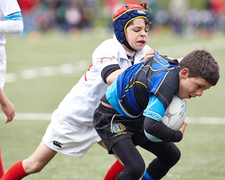 8719_26-Apr-14_RugbyOrcasitas.jpg