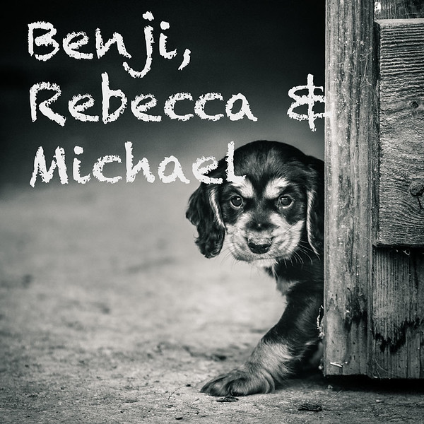 Benji-Gallery-Icons.jpg