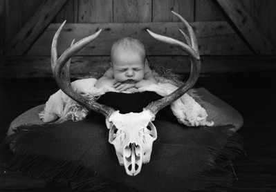 Shelby Newborn