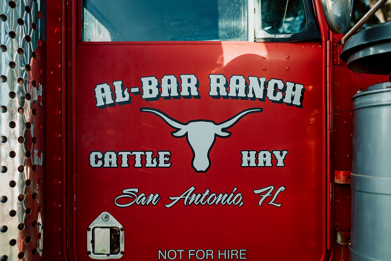 Barthle Cattle-3 (1 of 3).jpg
