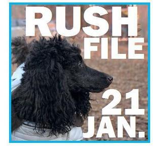 21 JAN. RUSH FILE