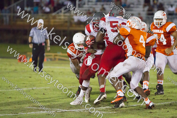 2013-14 High School Sports