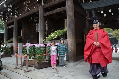 Japan November  2013