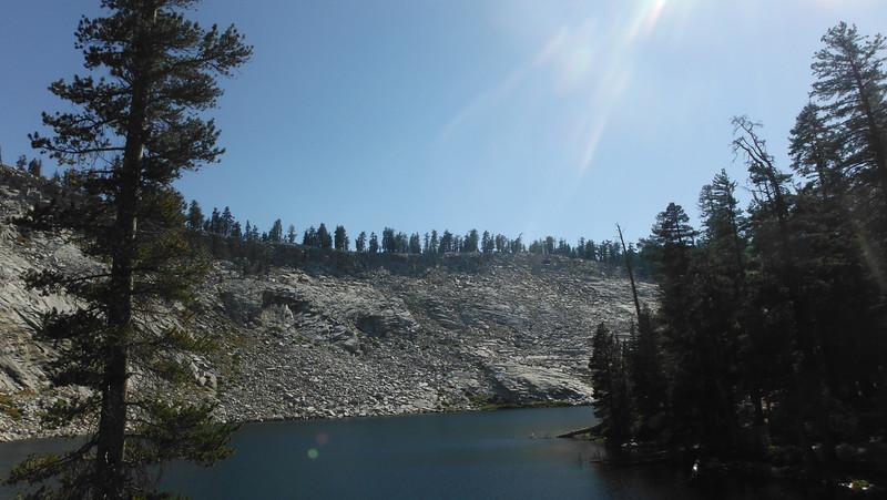 sequoia 105.JPG