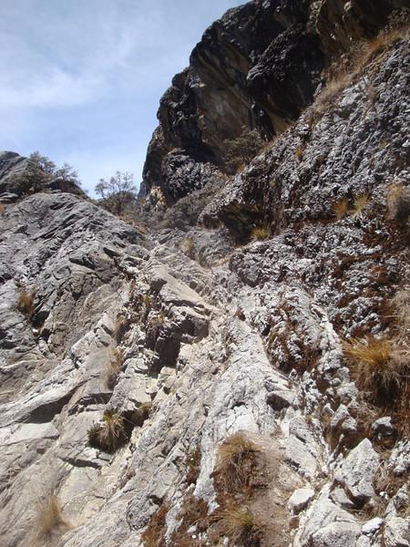 Gorge trail 1.JPG