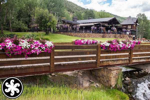 Beaver Creek Real Estate Photography - Spruce Tree, Arrowhead