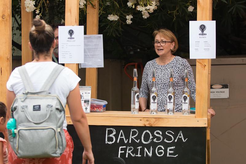 BarossaFringe-LaunchParty-CreditNathanielMason-Y-0147.jpg