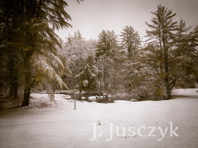 Jusczyk2020-1515.jpg