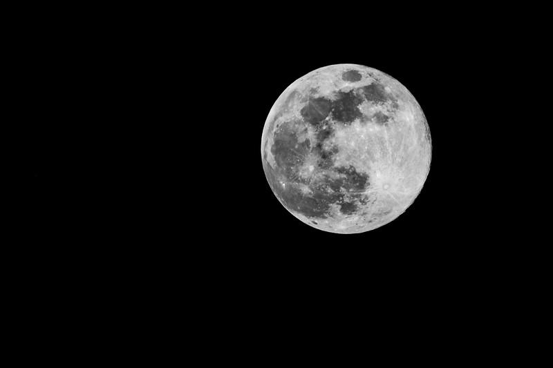 A Full Moon (Worm Moon)
