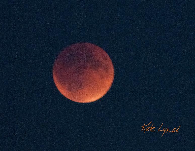 Lunar-4926
