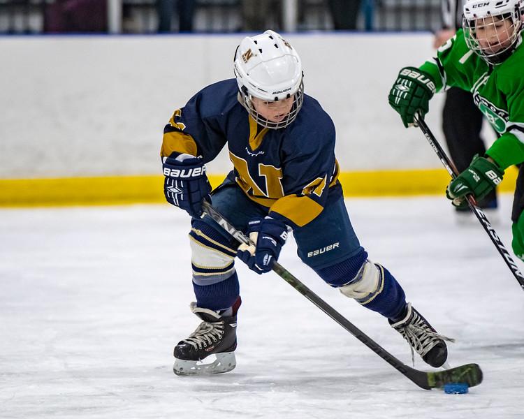 2019-02-03-Ryan-Naughton-Hockey-30.jpg