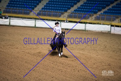 MAR 24  Reining Youth 18 & Under