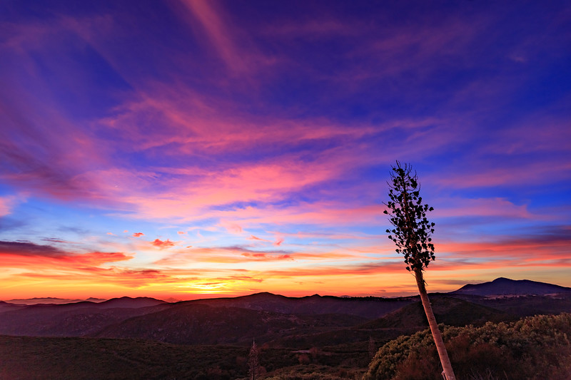 Epic Colorful Sunset in Mount Laguna