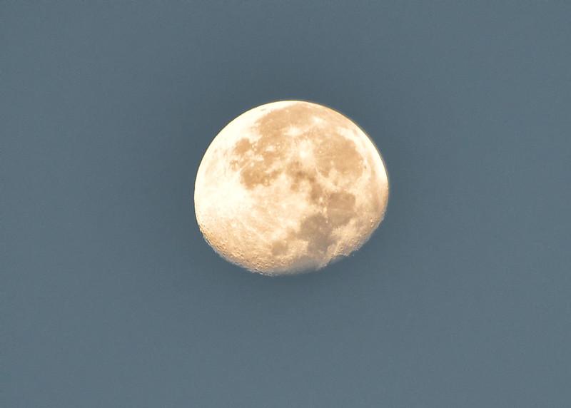 NEA_1199-7x5-Morning Moon.jpg