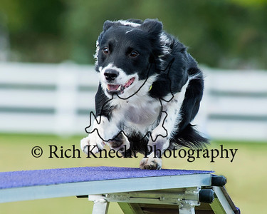 Princeton Dog Training Club AKC Agility Trial September 14-15