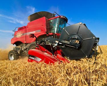 Dayton Harvest 2009
