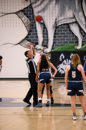 Girls Basketball: Tuscarora 50, Loudoun County 33 by Derrick Jerry on February 17, 2020