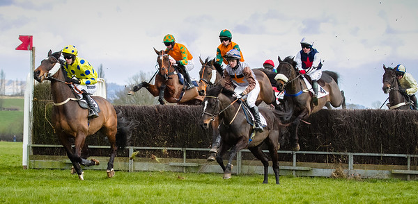 Upton Point to Point 2013