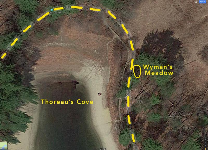 Wymans_Meadow_Satellite_Closeup_Yellow_Path.jpg
