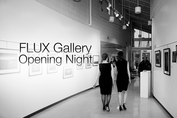 FLUX Gallery Opening Night