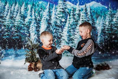 Dailey Snow Mini 2019