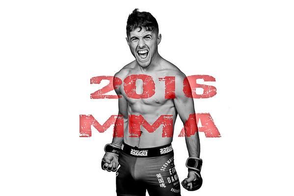 2016 Fight Album