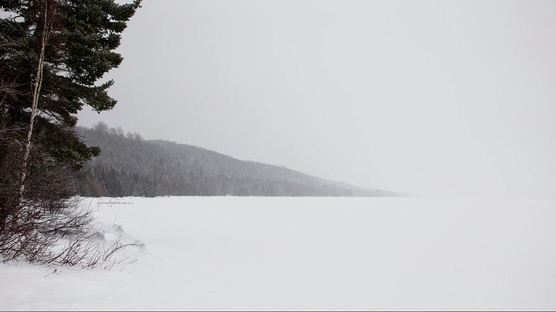 Misty 2015