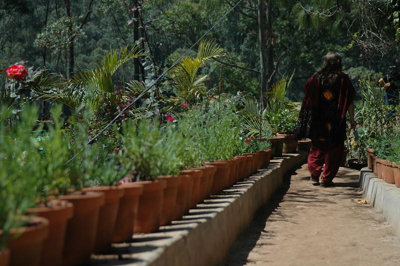 Cheryl at a flower garden near Munnar