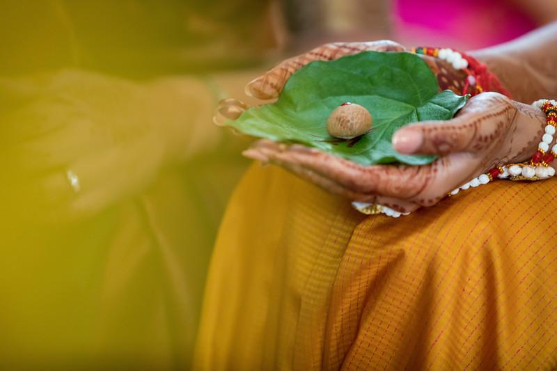 Hina_Pithi_Pooja-143.jpg