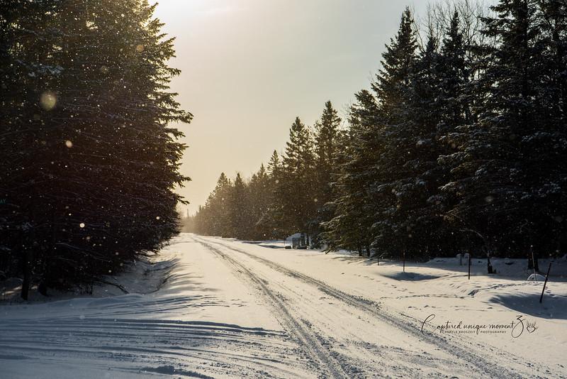 181223 Snow 0072.jpg