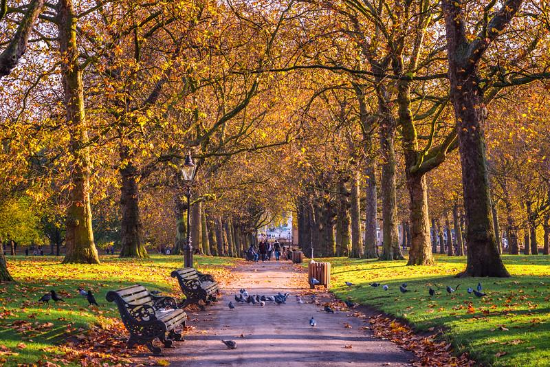 Green-Park-2.jpg