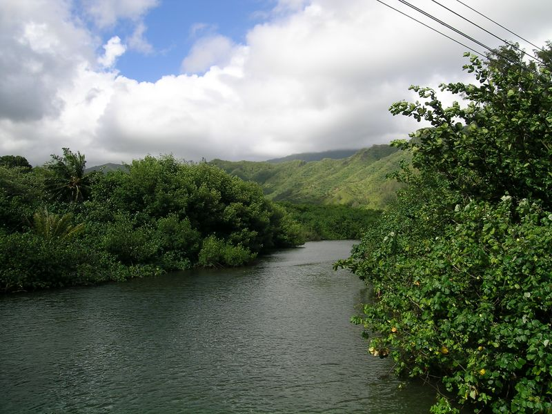 Copy of Hawaii2 009.jpg