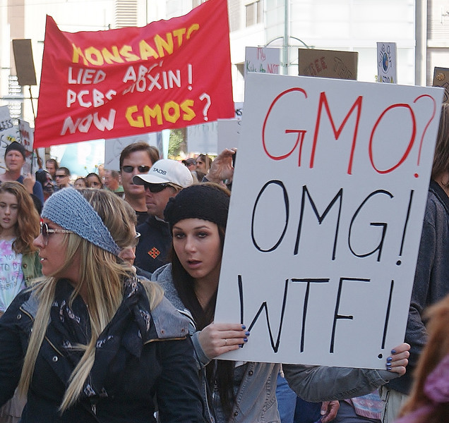 "About 250 people joined the ""March Against Monsanto"" in Denver, Colorado, one of 400 marches worldwide. (10/12/13) The actions were to protest Monsanto's production and use of GMO's, pesticides, herbicides and genetically engineered seeds."