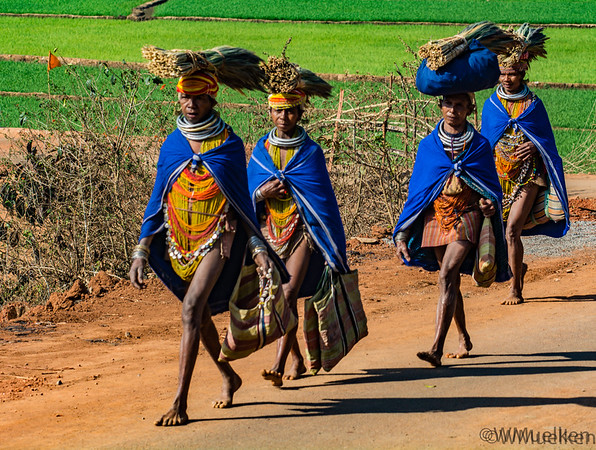 India  - Tribes of Odisha -  March 2019