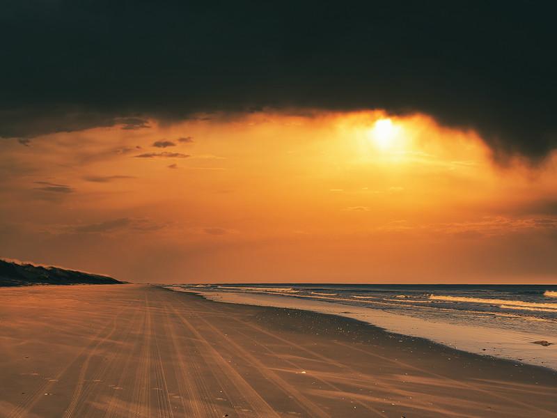 BeachFalseCapeStatePark-014