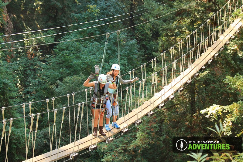redwood_bridge_1473461662858.jpg
