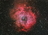 Runner Up A-DS-KerryAnn Lecky Hepburn-Rosette Nebula HaRGB  	 Date: January 7, 2009 Camera: QHY-8 Scope: Sky-Watcher 80mm Equinox, WO type II FF Exposure: RGB: 5x10min and 15x5min, Ha: 7x10min 	 scores: 9.5 	8.5 	8.5 	26.5 	 superb. Stars are pinpoints. Lovely for the size of the scope. Processing is superb.