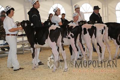 Leduc Holstein Show 2016