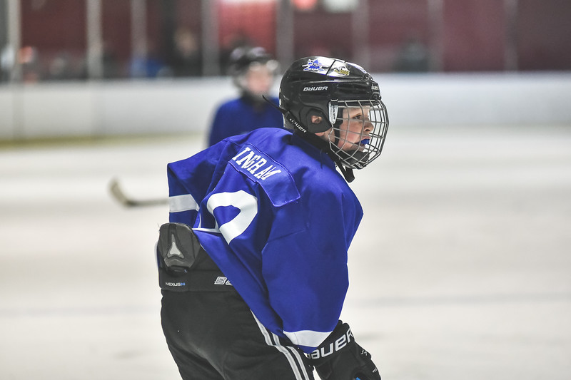 Leafs-72.jpg