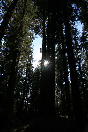Sequoia NP Labor Day 2006