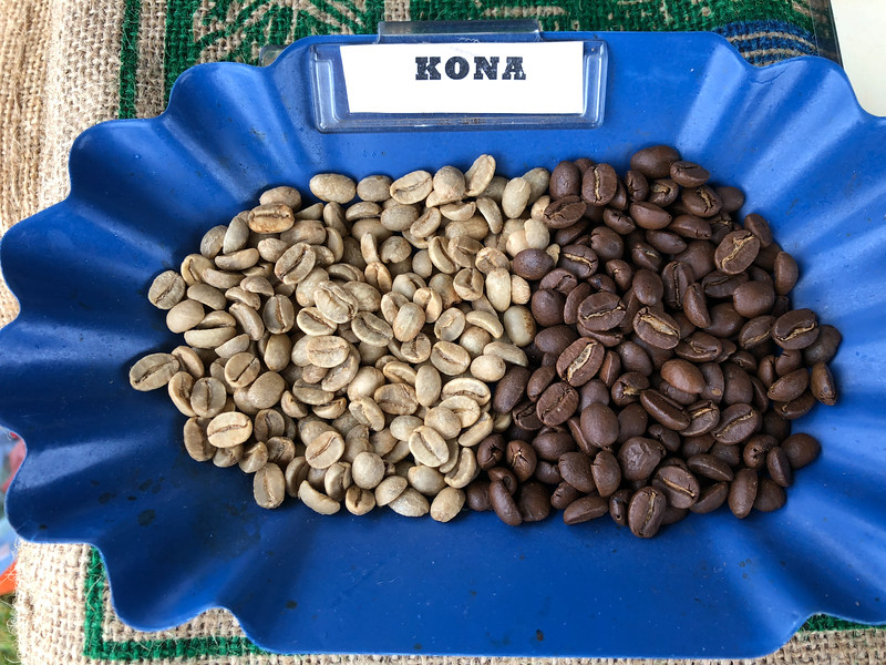 Hawaiian coffee beans, before and after roasting