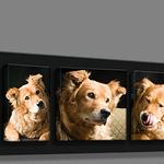 Image Blocks  .jpg