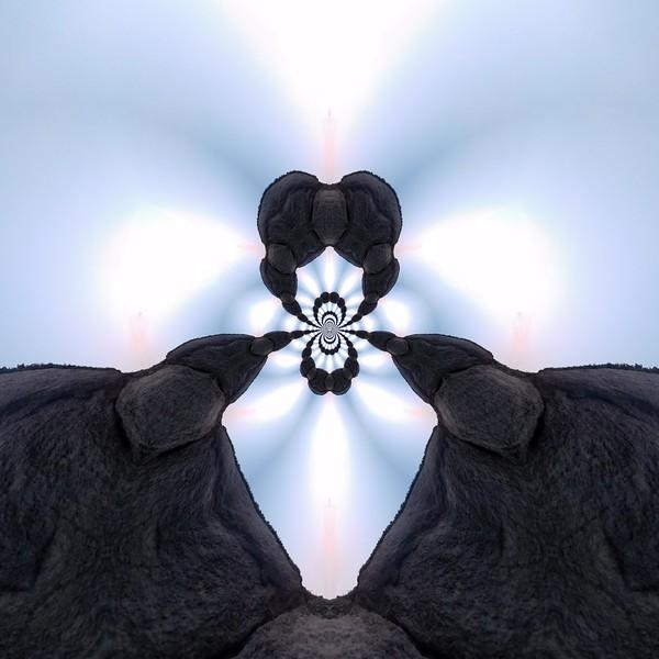 58483_mirror3.jpg