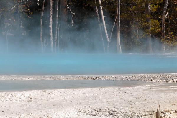 2019 Janet & Bill Yellowstone National Park