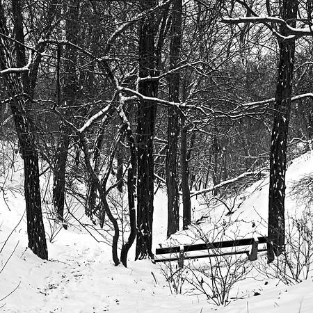 Hostivař v zimě