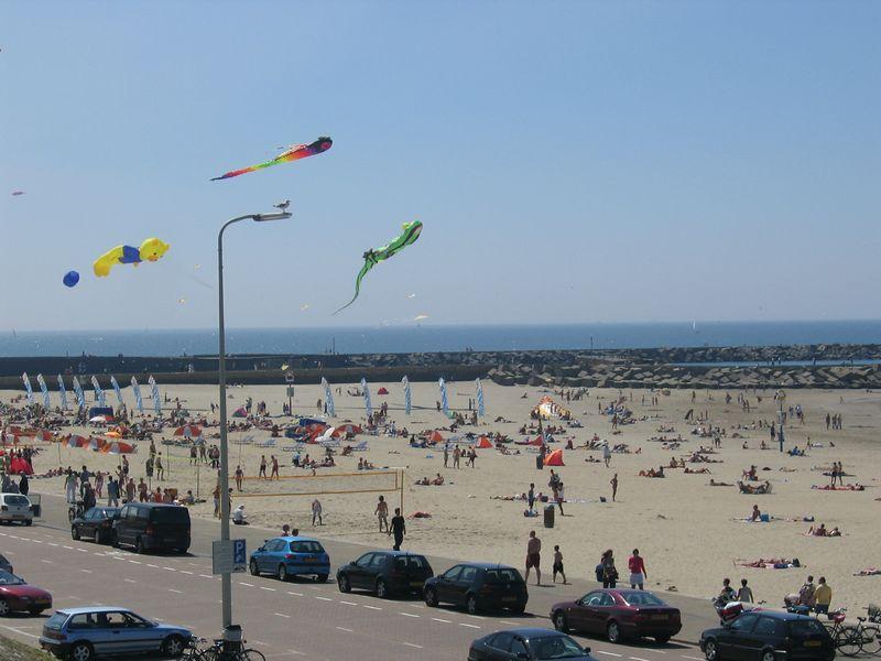 kites_1.jpg