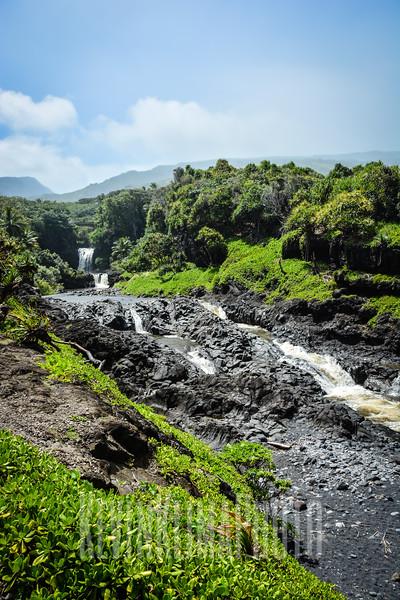 Maui153.jpg